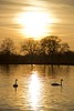 Sunset at Dinton (The Southern Fairy) Tags: sunset lake water river berkshire uk dinton pastaures depth field neil pickin images canon 5d mkiii
