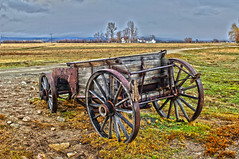 Rice Field in the Central Valley of California (johnalves2) Tags: california centralvalley northamerica sacramentovalley sanjoaquinvalley usa agriculture bounty crop farm farming food growing harvest nourishment nutritious ranch ranching rice starch valley