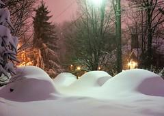 Jan '16 blizzard ~ one year ago tonight (karma (Karen)) Tags: baltimore maryland home street snowstorms jan16blizzard trees shadows buriedcars lights powerlines