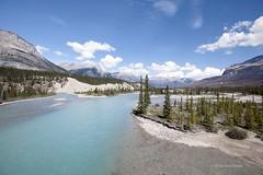 Athabasca River (P e r i c l e s) Tags: river río ríoathabasca athabascariver jaspernationalpark alberta canada myfavourites pbx3837