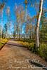 IMG_0275 (Forget_me_not49) Tags: alaska alaskan wasilla lakes lucillelake boardwalk pier sunrise waterways