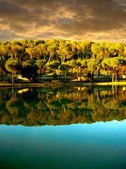 Still wrong reflections... (Villa Ada, Rome)