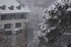Hardturm in the snow (Dreamer7112) Tags: snow 20d schweiz switzerland europe suisse suiza canon20d zurich canoneos20d snowing zrich svizzera zuerich winterwonderland eos20d zurigo limmatwest latemarchsnow