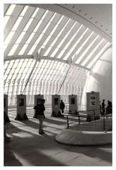 (Noel Arraiz) Tags: valencia architecture lafotodelasemana arquitectura exhibition bn calatrava cac hemisferic buena2 buena4 buena1 buena3 lmff lfscontraluces