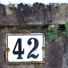 42: the ivy league (tillwe) Tags: snow sign wall rust ivy number 42 tillwe housenumber 200603