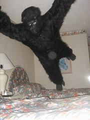 Goooooorilla (_Dekan_) Tags: jump jumping bed gorilla popular bedjump
