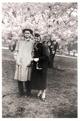 Cherry (UrbanDorothy) Tags: horst pappap oldphotos love inlove pink couple married parents spring sprinttime auprintemps cherry cherryblossom orchard floweringtree flowers cherryblossoms lovely gibb malsatzki smith family bravo vintage myfamily familyphotos familysnapshots snapshots mafamile oldphotographs snaps pappapcollage papap grandfather familyphoto