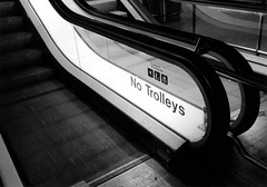 No Trolleys (George Pollard) Tags: vienna wien bw holiday naughty austria blackwhite airport kodak escalator 2006 february t400cn stanstead xa3 tellingoff naughtynaughty olympusxa3 lympus bollocking verynaughty extremelynaughty
