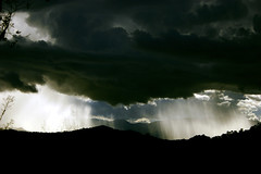 I'll Take The Rain (Anna Carvalho.) Tags: summer brazil sky cloud mountain storm mountains nature rain brasil clouds umbrella drops do natureza chuva natura cu vale nuvens brazilian vero storms nuvem ceu brasileiro montanha campos forte montanhas guarda jordao darksky jordo brasileira valey summerrain camposdojordao verao tempestade guardachuva camposdojordo chuvadevero chuvadeverao tempestadedevero tempestadedeverao chuvaforte chuvona