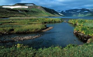 Iceland Hesteyri West Fjords