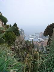Monaco - Exotic Garden View (SWan's Photo Boudoir) Tags: cacti monaco frenchriviera jardinexotique exoticgarden