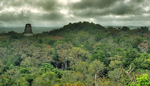 Oil Is Mastery Holtun Lost City Found In Guatemalan Jungle