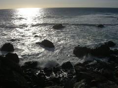 Jade Cove, Big Sur (3) (marypcb) Tags: california light beach water highwayone bigsur seals sh1