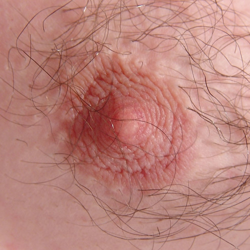 Pictures of hairy nipples