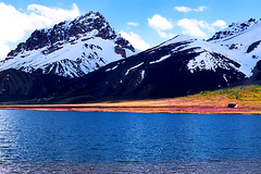 Amazingly Beautiful Shimshal Lake (meansmuchtome) Tags: flowers blue pakistan sky mountain lake snow mountains flower ice water colors clouds landscape north glacier karakoram kashmir himalaya northernareas himalayas pamir pamirs shimshal