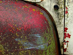 still wet (Dill Pixels) Tags: hinge old red green ford topv111 truck vintage moss rust decay rusty pickup f1 topv222 dirt fender spotty rusted oxidation algae peelingpaint crusty decayed crud gunk encrusted blotchy gerhardrichter