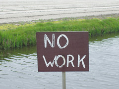 no work (alex) Tags: flowers holland work no lisse lieden