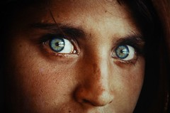 Afghan Girl/Steve McCurry/1983 (.Andy Chang.) Tags: pakistan portrait face photo eyes war shanghai great d70s favorites exhibit exhibition explore photograph afghan peshawar 1983 myfavorites impressive cccp nationalgeographic deeply afghangirl stevemccurry ngs duolun sharbatgula beyondthevision exploredpakistan