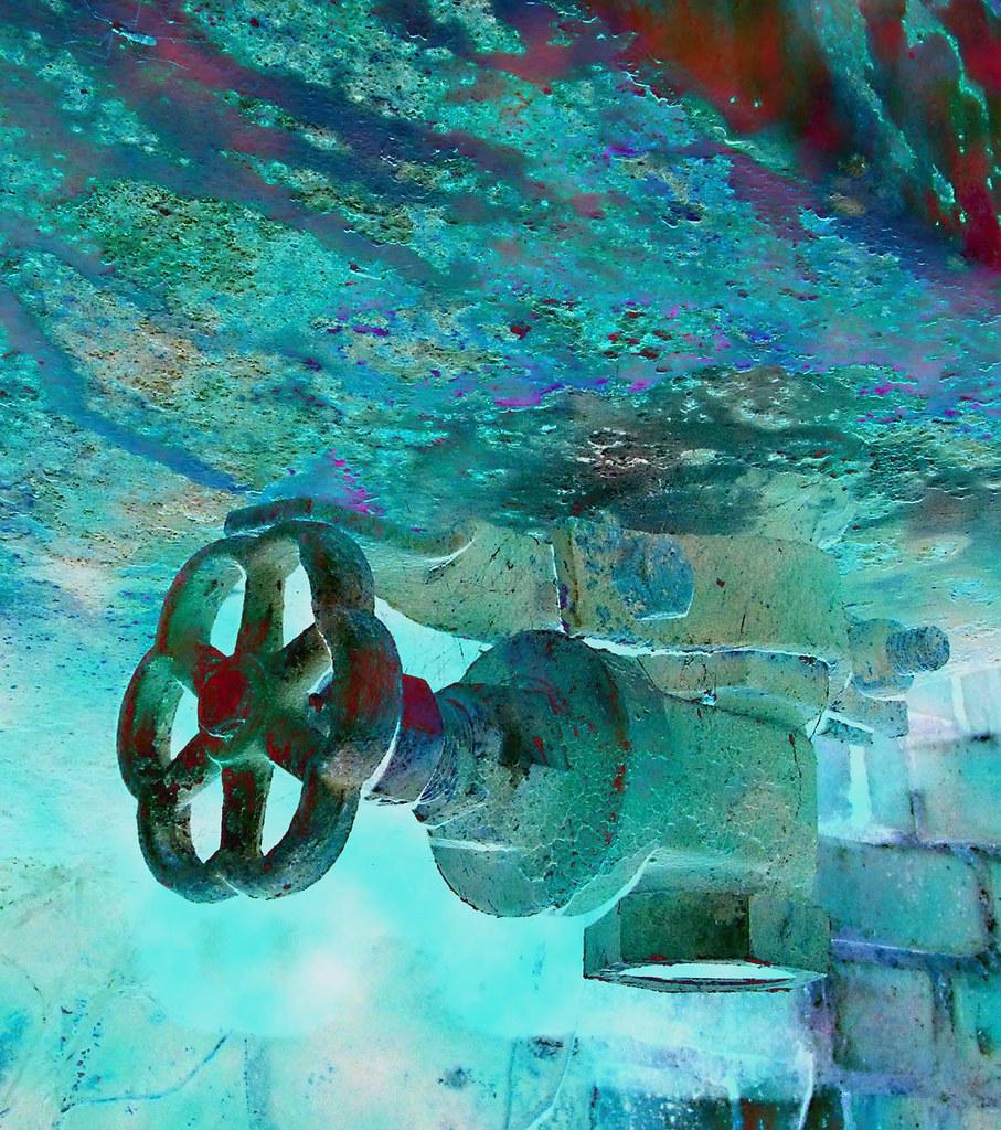 Nautilus valve