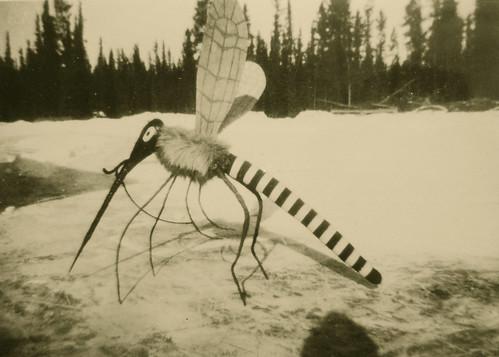 Mosquito circa 1940 in Alaska