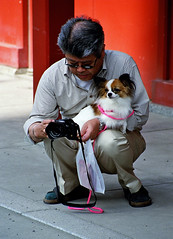 Do you understand now how it works? (manganite) Tags: camera people men film dogs animals festival japan asian fun sensoji japanese tokyo perfect funny asia minolta tl candid temples nippon asakusa nihon kanto kodomonohi 7000 firstthought manganite may52006 challengeyou challengeyouwinner date:year=2006 date:month=may date:day=5