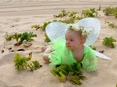 Fairy Faith (casch52) Tags: baby plant green 20d beach girl angel canon hawaii photo costume kid sand fuji oahu faith dressup fairy photograph northshore honolulu explorer440 copyrightedmaterialallrightsreserved copyrightedallrightsreserved familygetty2010 familygetty