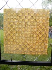 "Origami in the Park- Joel Cooper @ Lawrence KS ""Art in the Park"" (EricGjerde) Tags: show art lawrence artwork origami eric mask display ks 2006 masks kansas gjerde tessellation tessellations paperfolding bekah may7 artinthepark joelcooper origamijoel"