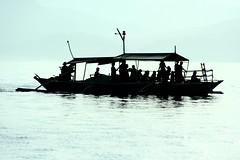 dolphin watchers (Farl) Tags: ocean travel blue sea people colors backlight sunrise fun boat philippines sandbar adventure visitors bais whalewatching watchers negros tanon negrosoriental phototip cebusugbo dolphinwatching tanonstrait manjuyod
