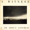 a witness | i am john's pancreas