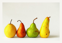 Pear Parade (espion) Tags: stilllife topf25 fruit topf50 100v10f loveit pear gong bosc 1000v may06 packham 1000v40f sgpow07 abatefetel freetheimagecolour