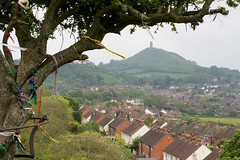 the holy thorn of avalon (Tobymutz) Tags: uk england glastonbury somerset holythorn isleofavalon josephofarimatha uponwearyallhill glastonburytorinthedistance laylines englandsholyestearthe