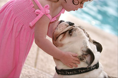 Beauty and the Beast (Domain Barnyard) Tags: dog love water girl beautiful bravo sweet bokeh young canine 123 2006 bulldog canoneos20d awww k9 1on1 tingey yearofthedog2006 topphotoblog domainbarnyard ftfr 123dogs theblinkofaneye
