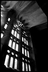 Inside La Sagrada Familia (brien applegate) Tags: barcelona deleteme5 deleteme8 deleteme deleteme2 deleteme3 deleteme4 deleteme6 deleteme9 deleteme7 window familia spain saveme cathedral deleteme10 sagrada gtbcn06