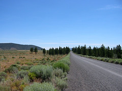 China Hat Road (Ben Amstutz) Tags: road oregon centraloregon gray gravelroad chinahatroad