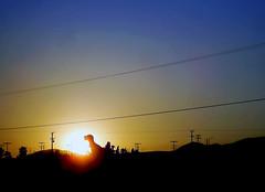 T-Rex Sunset (See El Photo) Tags: blue sunset sky 15fav orange sun clouds wonderful shadows sundown great wires greatshot telephonepoles trex 1f faved dinosaure blueorange landofthelost sillouite dinosunset