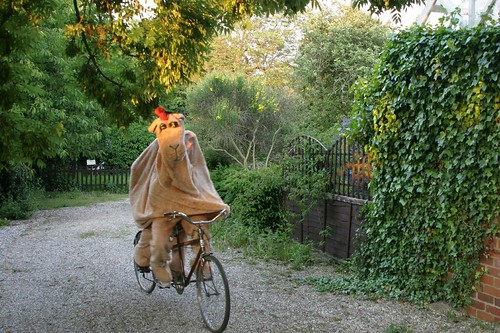 cycling in full flight