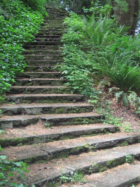 wp_stairs