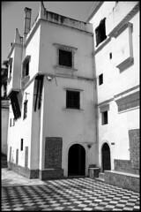 (jam-L) Tags: blackandwhite bw algeria noiretblanc musée moorish bardo algiers alger الجزائر moresque