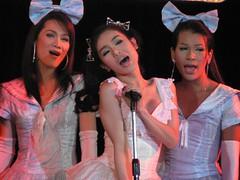 Lady Boys Mambo Show Thailand 3