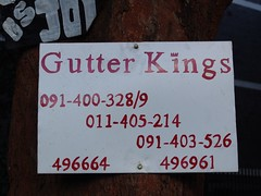 Gutter kings