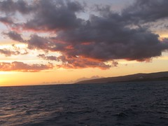 IMG_2610 (Dan F.) Tags: hawaii napalicoast bluedolphin kauai