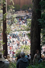 stern grove view (1600 Squirrels) Tags: sanfrancisco california usa photo lenstagged concert 300d 1600squirrels drebel sfbayarea nocal aimeemann sterngrovefestival sterngrove 2x3 sanfranciscocounty canon70300f456