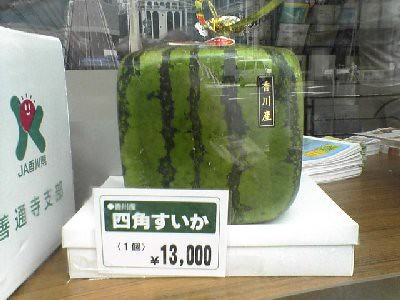 Square Water Melon
