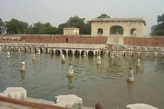 Shalimar Gardens 6