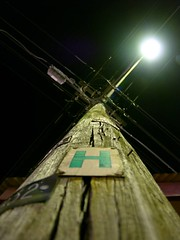 Up there somewhere (hinting) Tags: street leica wood light green sign lumix wire raw dof bokeh timber grain sydney australia pole panasonic h nails electricity lc1