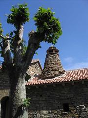 pirineo (ciaominino) Tags: rbol tejado chimenea