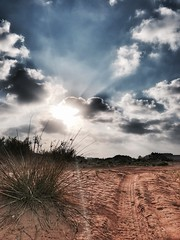 Last Sun for next three weeks (Sameen Mazhar) Tags: iphone7plus iphone uae sand desert path hdr clouds blue sunrise sunshine
