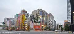2015320 2 akihabara akiba (PhotoAkiba) Tags: anime japan tokyo mainstreet crossing   akihabara akiba electrictown       2015