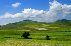 Fields (annalisabianchetti) Tags: mountains green montagne fields umbria