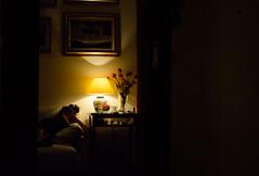 Daydream (Francesco dP) Tags: flowers shadow brown hot girl relax point mirror evening other view side picture ombre read sofa calma dentro specchio immaginare leggere riflesso esterno caldo guardare oscurit pensare mostrare lettrice riflettere specchiare fantasticare